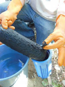 Cleaning a grewyater filter. (Image credit: Leigh Jerrard)