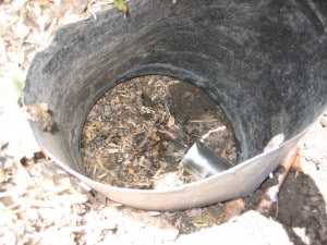 Greywater infiltrates into mulch basin, the pipe is a few inches above the ground to prevent clogging.