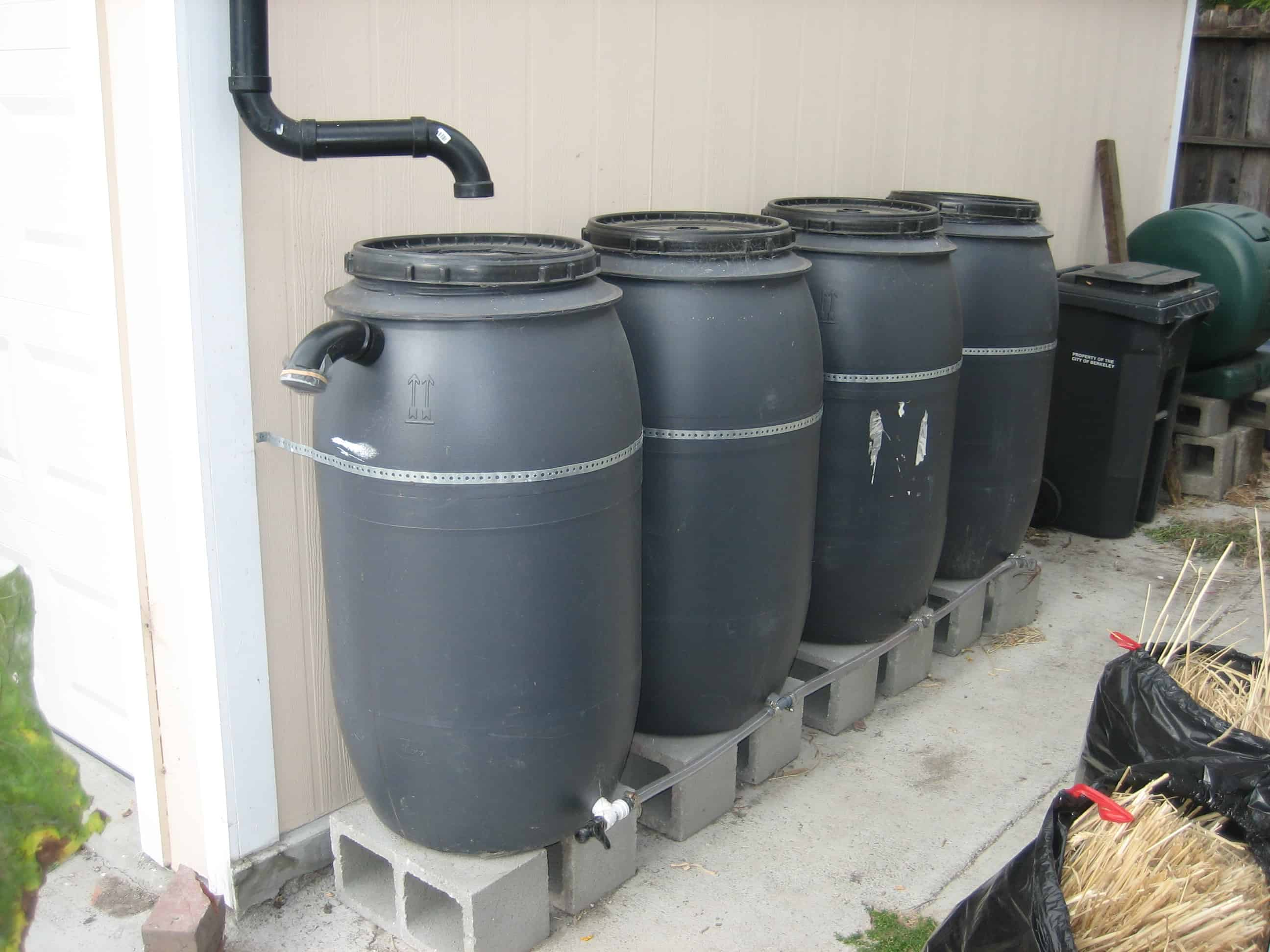 Rainbarrels Greywater Action