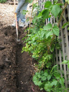 trench for mulch